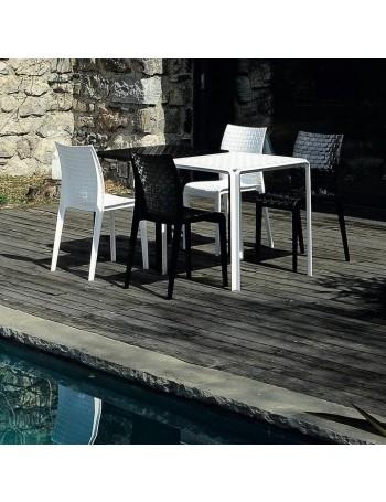 Ami Ami stol | odprodaja -30%