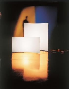 Light volume
