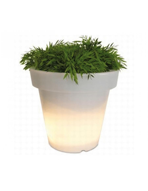 Bloom! illuminated pot by Serralunga